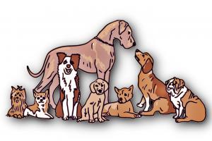 Zeichnung hunde