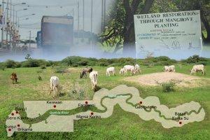 Landwirtschaft und Industrie in Gambia/Westafrika